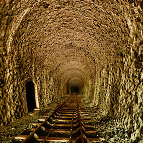 Abandoned tunnel by Florence Guichard - Transportation Railway Tracks ( urban, urbex, railway, rail, france, exploration, abandoned, tunnel,  )
