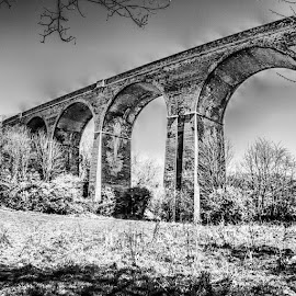 by Drew Shaw - Instagram & Mobile Instagram ( hartlepool, uk, viaduct, hdr, bnw, blackandwhite, insta_bw, bnw_society, bw_lover, bw_photooftheday, photooftheday, bw, instagood, bw_society, bw_crew, insta_pick_bw, igersbnw, bwstyleoftheday, monotone, monochromatic, noir )