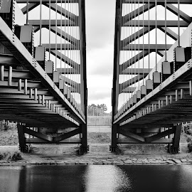 Twins by Lauren DiScipio - Buildings & Architecture Bridges & Suspended Structures ( led photography, black and white, contest, bridge, twins )