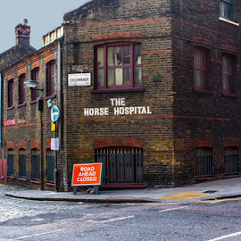 Horse Hospital by Jeanne Knoch - City,  Street & Park  Neighborhoods