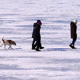 Trudging on Ice by Linda Ensor - People Street & Candids