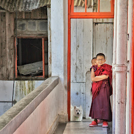 Young monks by Konstanze Singenberger - Travel Locations Air Travel ( monk, monastery, india, dog, darjeeling )
