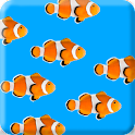 Fish School Wallpaper Free icon