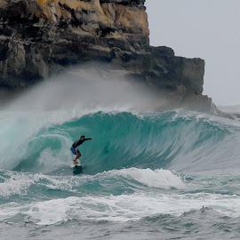Inside by Punai Cita Cemara - Sports & Fitness Surfing
