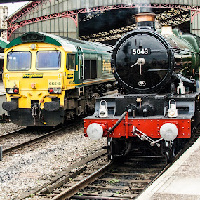 Freight and Steam by Andro Andrejevic - Transportation Trains ( steam locomotive, 66518, freightliner, 5043, gwr castle class 4-6-0 no 5043 earl of mount edgcumbe )