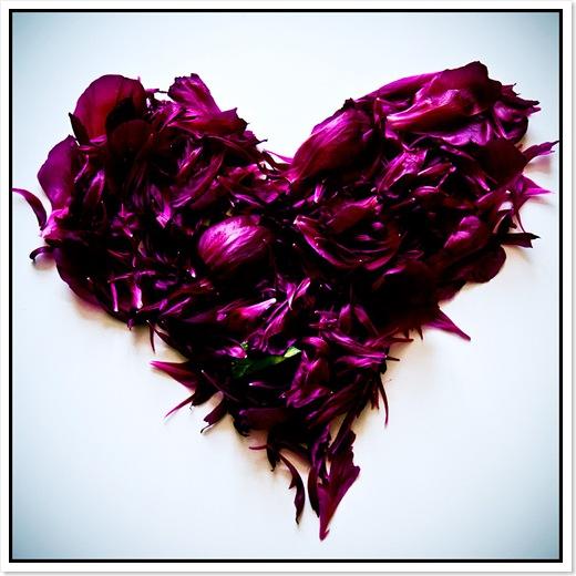 Blombladshjärta