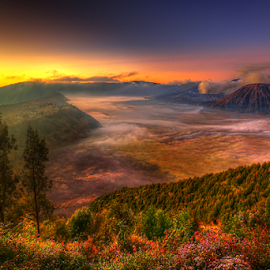 by Irwan Budiman - Landscapes Mountains & Hills