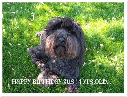 gus-birthday