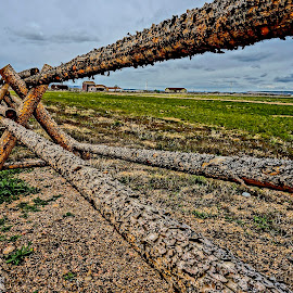 On the Range by Barbara Brock - Landscapes Prairies, Meadows & Fields ( fence, log fence, wyoming prairie )