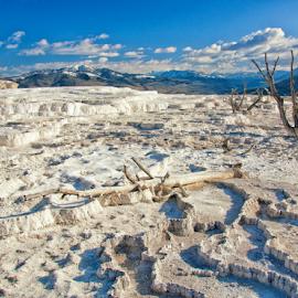 Mammoth Hot Springs by Jonathan Abrams - Landscapes Caves & Formations ( yellowstone, sky, mineral, white, mountans, landscape )