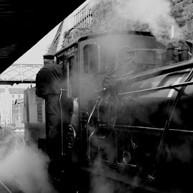 Welsh Highland Steam by Jon Horlor - Transportation Trains ( railway, wales, locomotive, tender, train, steam )