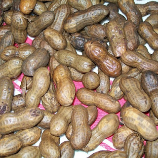 Crock-Pot Boiled Peanuts