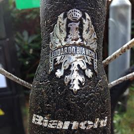 Bianchi MTB muddy logo  by Jimmy Giggins - Sports & Fitness Cycling ( cycling mtb logo mud bianchi off road )