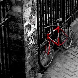 selective color by Lovnit Singh - Transportation Bicycles ( selective color, black and white, street, road, bicycle, pwc,  )