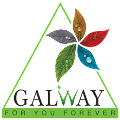Free Galway APK for Windows 8