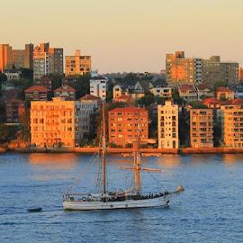 Sydney by Helen Beggs - City,  Street & Park  Skylines