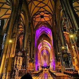 by Thomas Frias III - Buildings & Architecture Places of Worship ( catholic, vienna, wein, austria, awesome, travel )