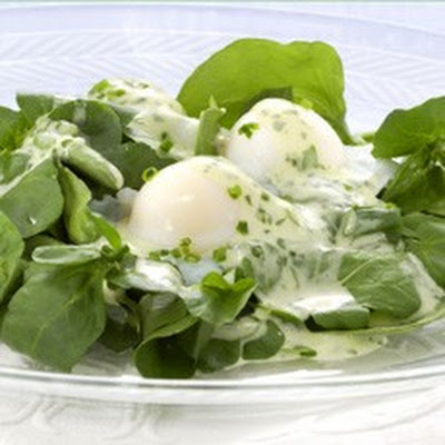 Poached Quail Egg Salad with Watercress and Tarragon Sauce