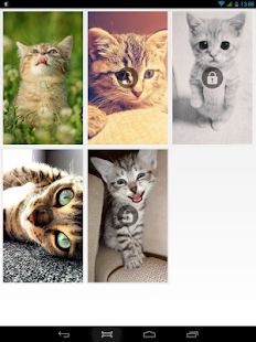 Puzzle Cute Kittens PRO - screenshot