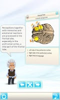 Screenshot of Einstein™ Brain Trainer Free