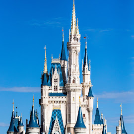 Disney World by Chris Campbell Stacy Campbell - City,  Street & Park  Amusement Parks