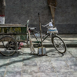 Bike cart in Xian China by Barb Hauxwell - Transportation Bicycles ( broom, tree, street, xian, china, bicycle )