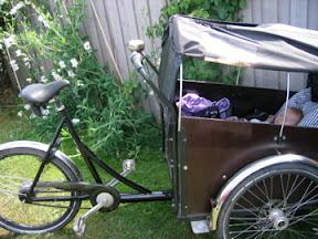 cykle
