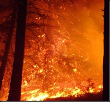 Bridge Creek Fire