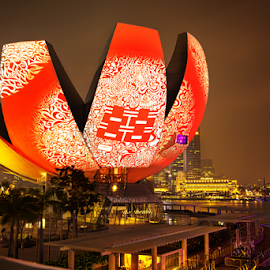 iLight Marina Bay 2014 by Sam Song - City,  Street & Park  Street Scenes ( singapore )
