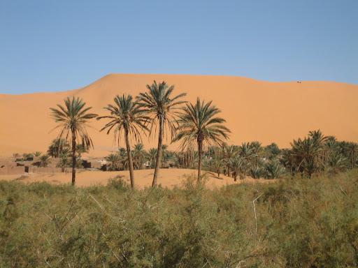 صور بني عباس بولاية بشار جنوب الجزائر Photo%20desert%20tunisie%20074