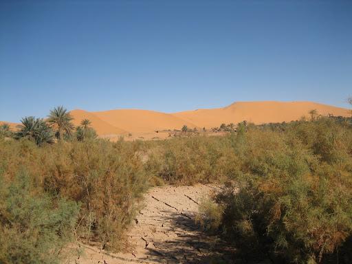 صور بني عباس بولاية بشار جنوب الجزائر Photo%20desert%20tunisie%20072
