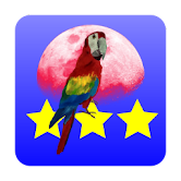 3 Stars in Birds Space