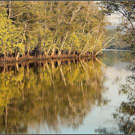 by Amanda Swanepoel - Nature Up Close Water