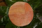 http://picasaweb.google.com/tsudapicasa/wYGZML/photo#5173494894214777506