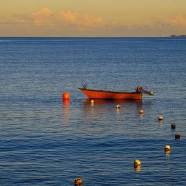 early morning by Vibeke Friis - Transportation Boats ( orange, mooring, fiji, morning, boat, blue, color )