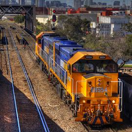 Working locomotives by Peter Keast - Transportation Trains ( railway, railroad, locomotive, train, bridge, deisel,  )