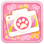 My Cat Photo Sticker APK Image