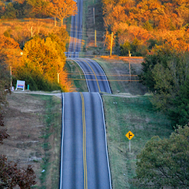 Road on an Autumn Day by Michael Buffington - Transportation Roads ( orange, hills, blacktop, highway, autumn, green, fall, sunshine, yellow, road )