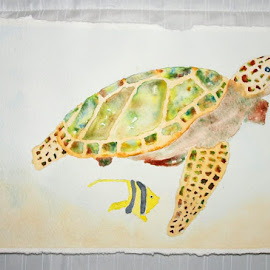 Had some painting lessons from Karen, this is the finished Green Sea Turtle by Denise Dunkley Hall - Painting All Painting