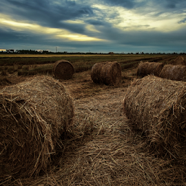Hay roll (dramatic) by Kelvin Shutter - Landscapes Prairies, Meadows & Fields