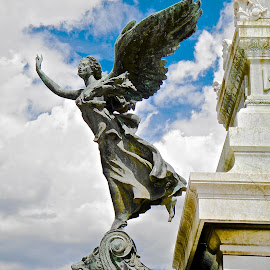 Italian Palace Statue by Steven Aicinena - Buildings & Architecture Statues & Monuments ( angel, statue, italian palace )