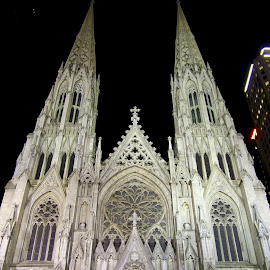 The Cathedral of St. Patrick by Michael Dorn - Buildings & Architecture Places of Worship ( st. patrick's cathedral, manhattan, the cathedral of st. patrick, cityscape, new york city )