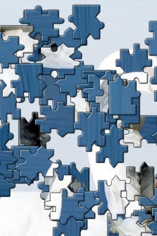 Alaska Lake Jigsaw Puzzle