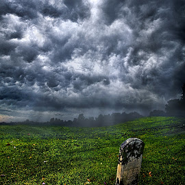 And Then There Was Gloom by Phil Koch - Landscapes Prairies, Meadows & Fields ( vertical, photograph, cemetery, fine art, yellow, travel, leaves, storm, love, sky, tree, nature, autumn, gloom, flowers, flower, orange, twilight, agriculture, horizon, grave, portrait, environment, dawn, season, serene, outdoors, trees, floral, inspirational, natural light, wisconsin, ray, landscape, phil koch, spring, sun, photography, blue sky, horizons, inspired, office, clouds, park, green, back light, scenic, morning, shadows, wild flowers, field, red, blue, color, sunset, peace, fall, meadow, landscapephotography, beam, earth, sunrise, landscapes, gloomy, mist )