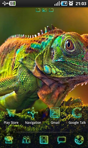 Chameleon Colorful Theme