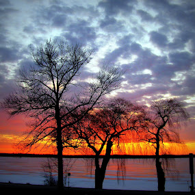 Dessert Sunset  by Patti Hobbs - Landscapes Waterscapes ( landscape waterscape desert sunset lake simcoe )