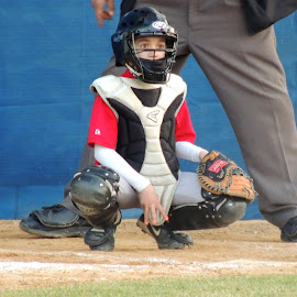 Game Sign by Sangeetha Selvaraj - Sports & Fitness Baseball ( sign, catcher, baseball, sport,  )