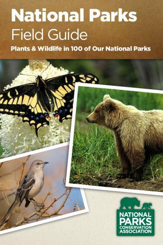 National Parks Wildlife Guide