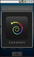 Screenshot of Camaleon Player