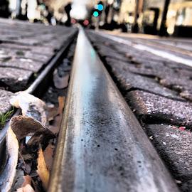 Train Rail by Michael Montgomery - City,  Street & Park  City Parks ( kingdom, nature, art, landscape, photography )